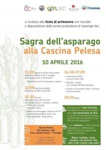 festa dell'asparago